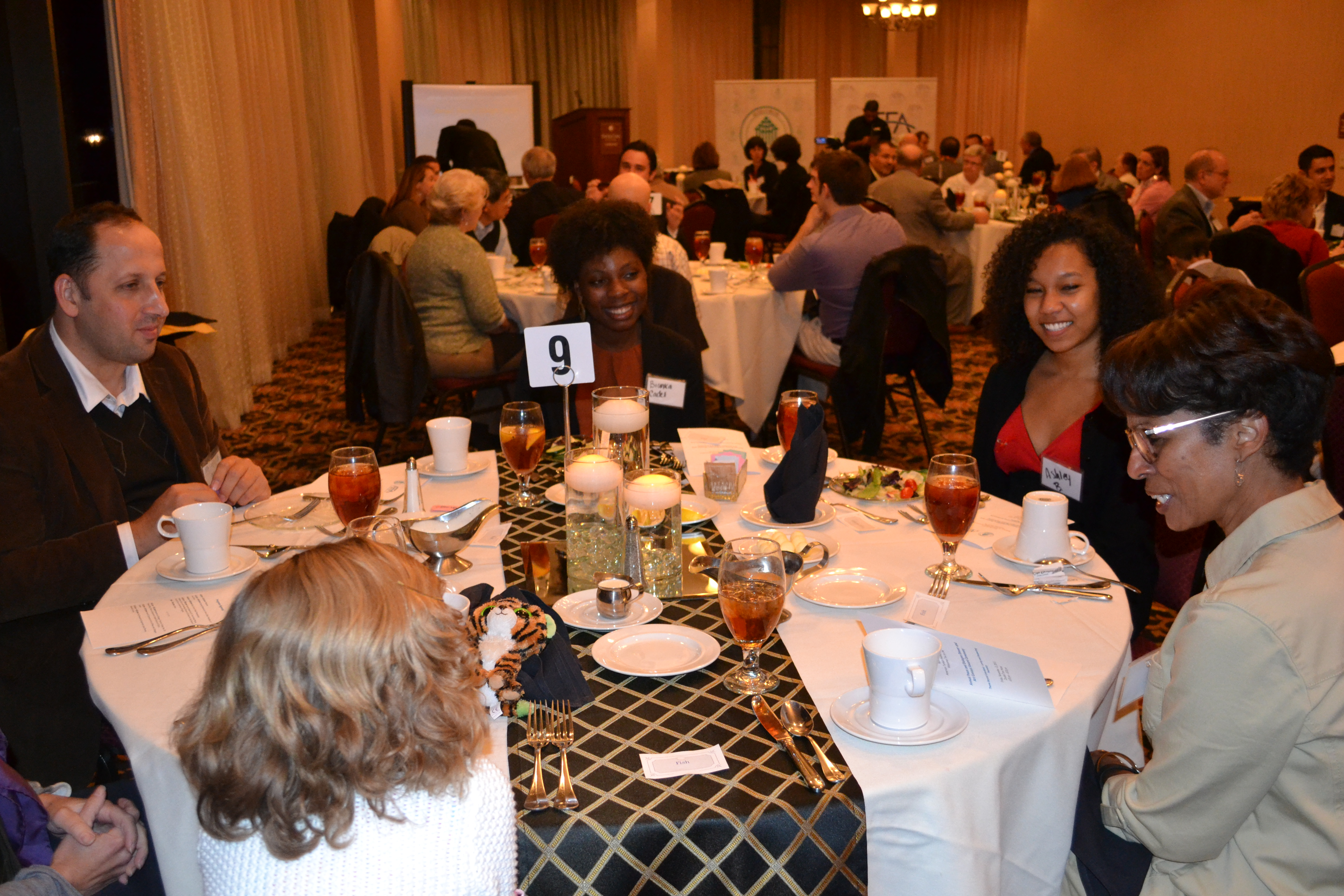 Rumi Forum-Charlottesville Peace and Dialogue Dinner 2015 (4)